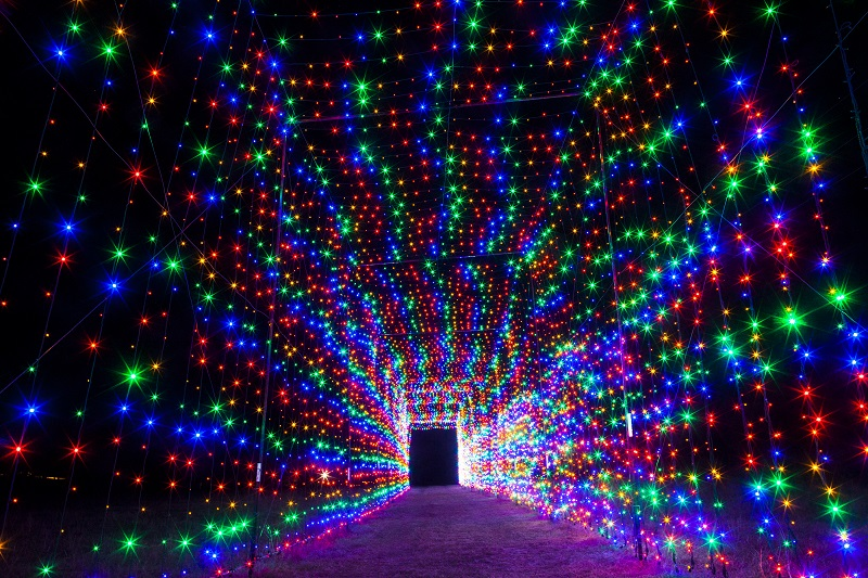 Add Some Sparkle to Your Holidays San Antonio with Christmas Light ...
